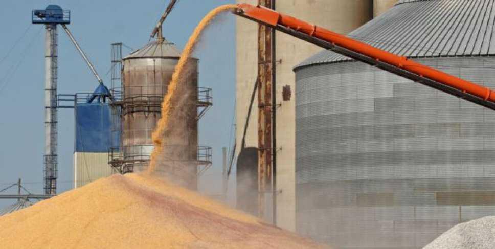 """Acusan a las cerealeras de comportarse """"como las dueñas de la provincia"""""""