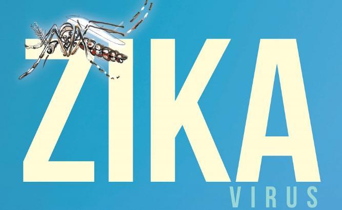 Advierten que el virus zika se transmite también por vía sexual