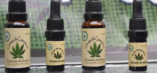 Avanza la implementación en Santa Fe de la ley de cannabis medicinal