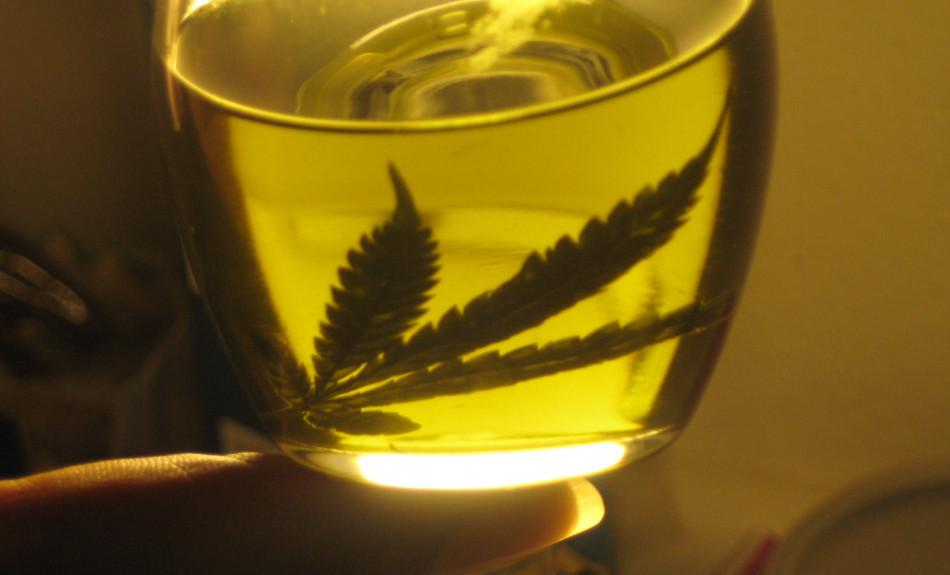 Buscan que los hospitales públicos den aceite de marihuana a epilépticos