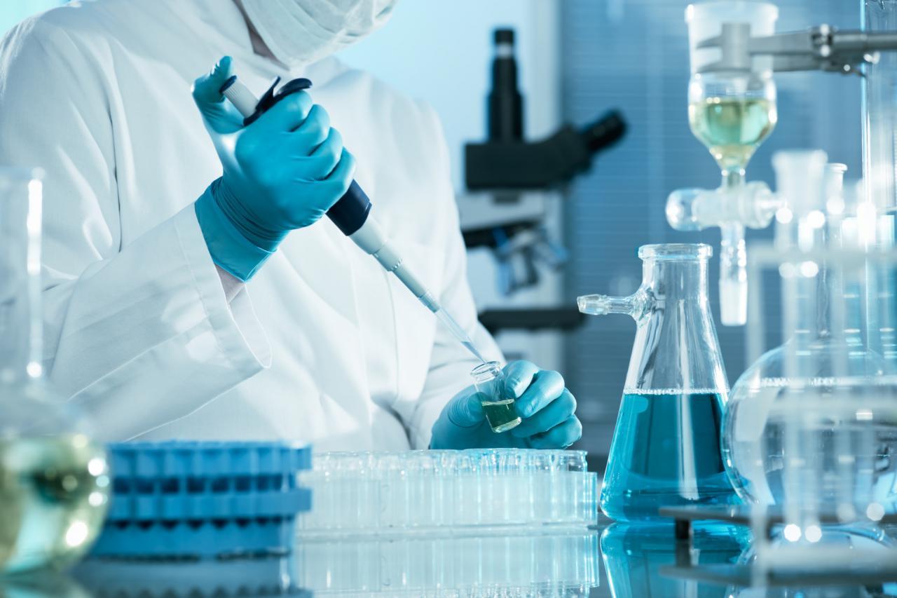 Científicos rosarinos hallaron una bacteria que alarga la vida y evita enfermedades