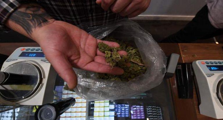 Cómo funciona la venta de marihuana en farmacias que ya debutó en Uruguay