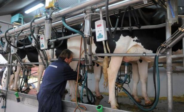 Confirman que faltará manteca hasta la primavera y alertan sobre la crisis del sector lácteo