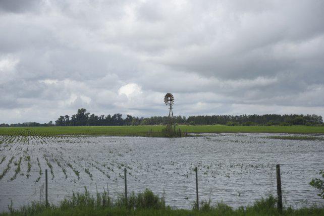 """El campo advierte que las lluvias dejaron un panorama """"catastrófico"""" para el sector"""