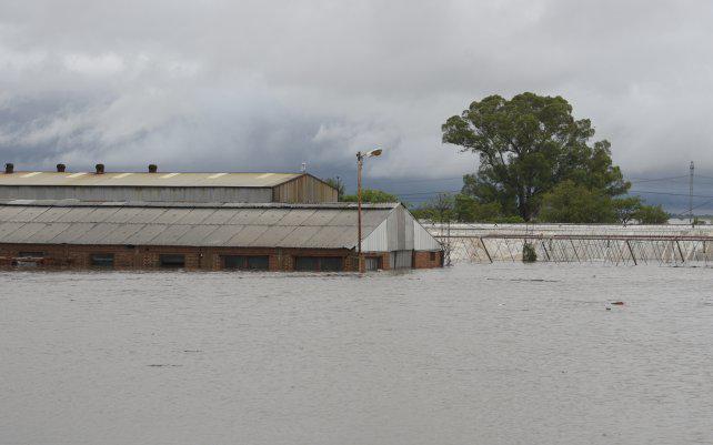"""El temporal dejó """"perdidas totales"""" en un millón de hectáreas de Santa Fe"""