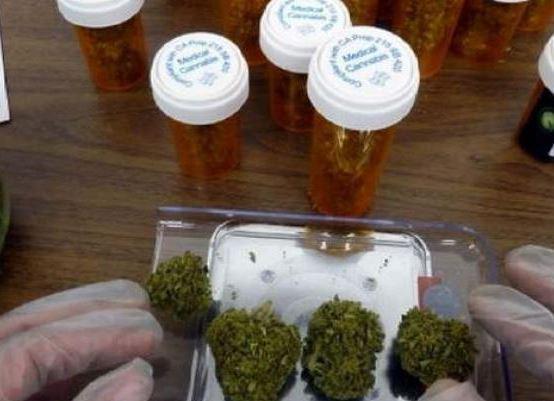 """""""Hay evidencia científica de los beneficios del canabis medicinal"""""""