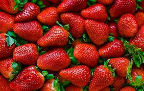 Productores de frutilla al borde de la quiebra por la apertura sin límites a la importación